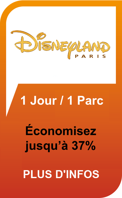Disneyland Paris 1 Jour / 1 Parc billets pas chers