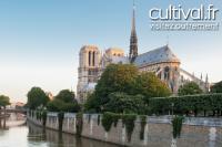 Visite Guidée Notre Dame de Paris
