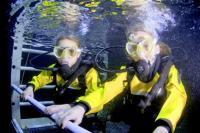 Deep Sea World Junior Diver