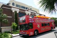 City Sightseeing Bus, New Orleans