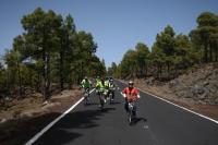 Downhill Bikes Tenerife