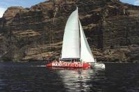 Maxicat Tenerife Cliffs