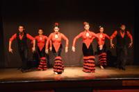 Palacio Del Flamenco Dancers