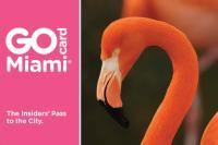 Go_Miami