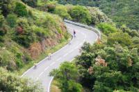 Downhill Bikes Salou 4