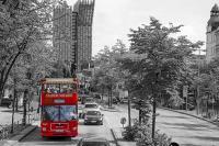 Die Roten Doppeldecker - Grosse Stadtrundfahrt Hamburg Linie A