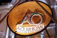 A O Show Logo