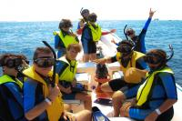 Snorkel and Sea Group