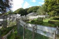 The Monkey Sanctuary - Territory