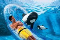 Dolphin Plunge at Aquatica