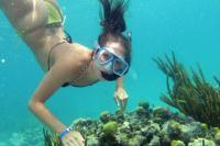 Woman Practising Snorkeling