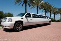 Florida Dolphin Tours Limousine