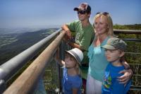 Illawarra Fly family