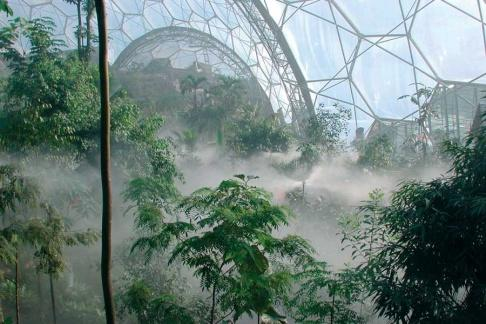 The Mist in the Rainforest Biome at the Eden Project