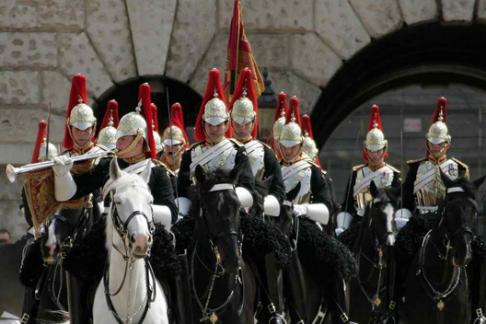 Household Cavalry horses