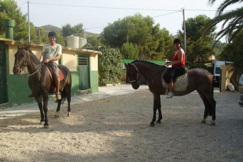 365Tickets ES A caballo en Benidorm