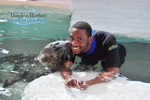 Click to view details and reviews for Miami Seaquarium Dolphin Encounter.
