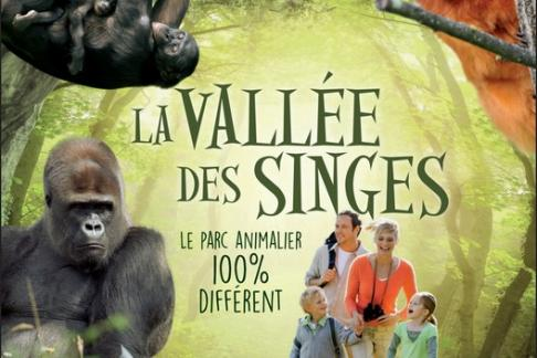 Image of La Vallée des Singes - Entrance Ticket