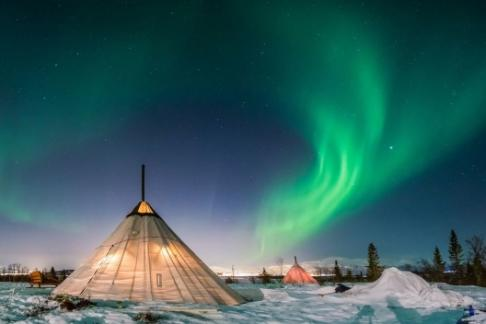 365Tickets ES La alimentación de renos , renos Trineo corto y Sami Cultura - Tromso