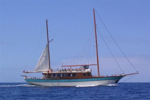 365Tickets Bahriyelli 5 hr Boat Trip, Tenerife