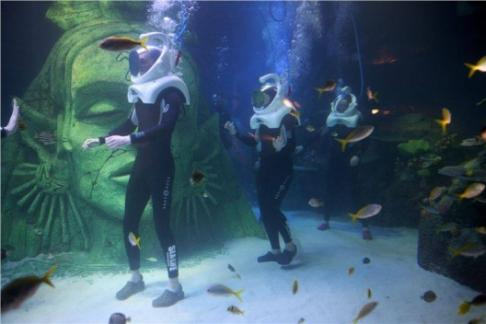 SEA LIFE Manchester Aquarium Offers, Discounts & Cheap Tickets Buy ...