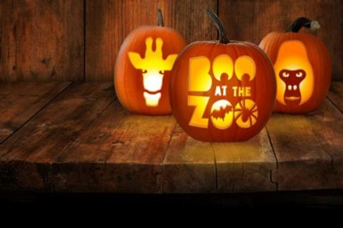 Click to view details and reviews for Zsl London Zoo Standard Ticket.