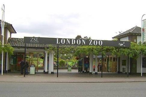 London aquarium discounts