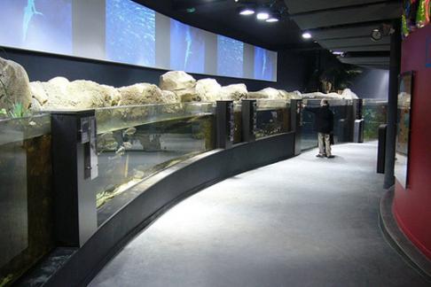 aquarium de cin 233 aqua offres r 233 ductions et billets pas chers acheter en ligne