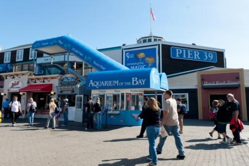 The Aquarium Of The Bay Offers Discounts Cheap Tickets