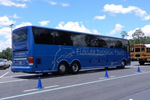 Discovery Florida Dolphin Tours - Gatorland Alligator Adventure with Airboats