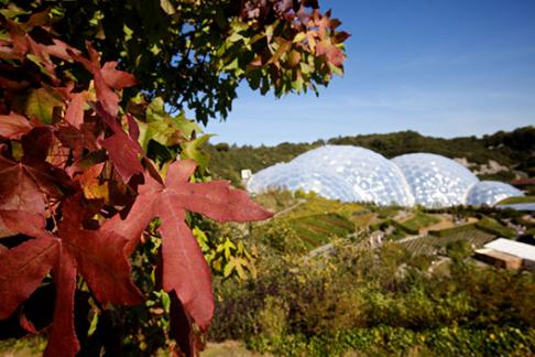 Autumn at The Eden Project in Cornwall Save 40%
