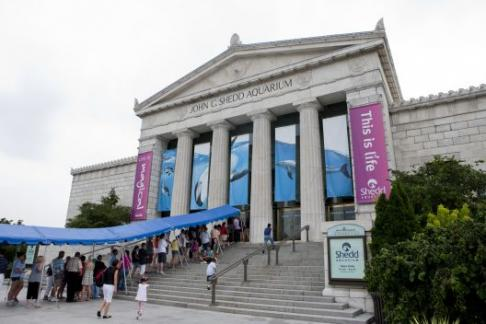 A general admission ticket to the National Aquarium includes access to all exhibits and daily presentations, including Blacktip Reef, Living Seashore, Australia: Wild Extremes, Upland Tropical Rainforest, Amazon River Forest, Shark Alley, Jellies Invasion and Dolphin Discovery.
