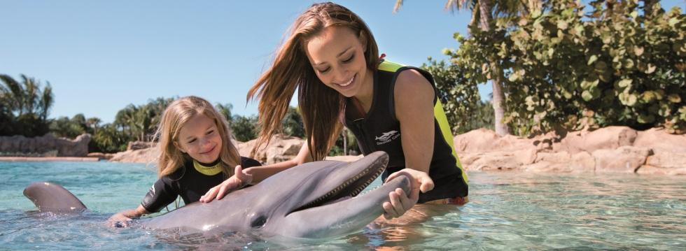 Discovery Cove - November Offer