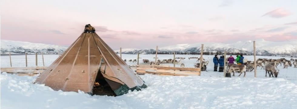 Samiske Opplevelser Tromsø